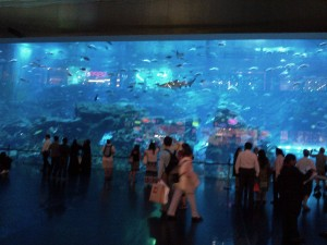 This massive aquarium, when you go in you are surrounded on both sides by the glass through which you see the fish and the water. I HAVE NEVER BEEN IN! It is called claustrophobia! Sorry!