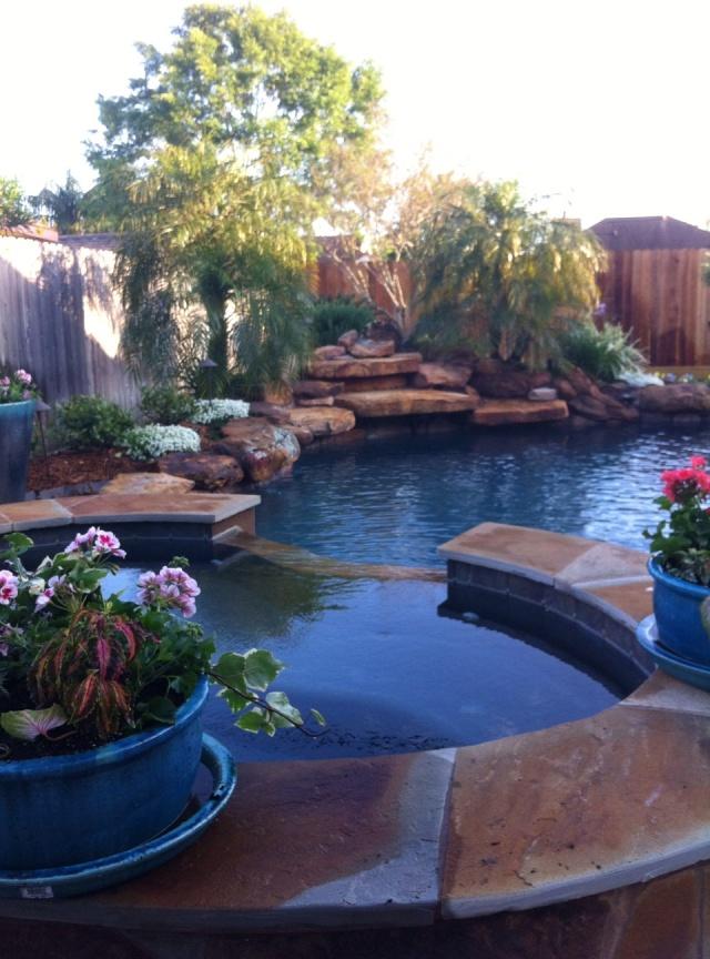 Josie's beautiful garden, looks like an oasis of peace...